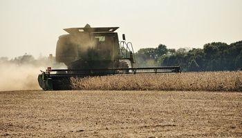 Entre Ríos finalizó la cosecha de soja de primera con un rinde récord