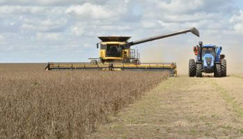 El agro en Brasil durante 2020: estiman una producción total de 145,59 mil millones de dólares