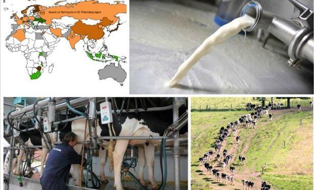 El costo de producción de leche cayó de US$ 46,0 a US$ 40,5.