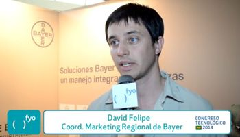 En CREA, el control de malezas de la mano de Bayer