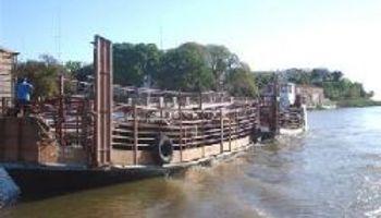 Autoridades evalúan daños por crecida del Paraná