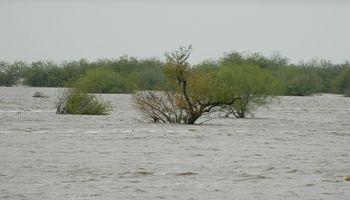 Estiman nuevas crecidas para los ríos Paraná y Uruguay