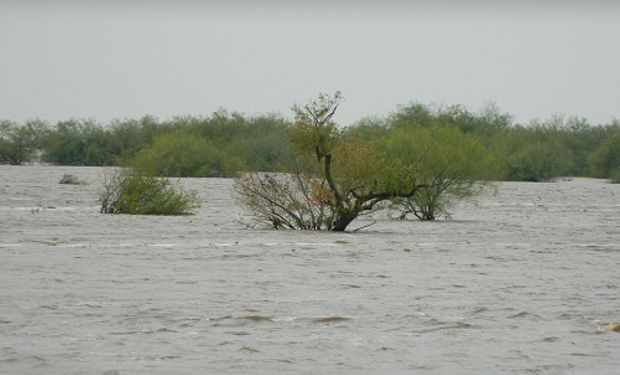 Según las estimaciones, se espera que se mantengan altos los niveles de los ríos y se podrían llegar a generar inundaciones por desborde.