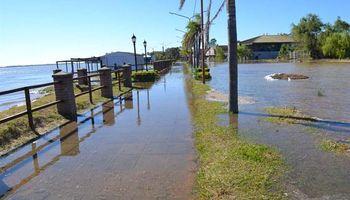 Río Paraná: sigue creciendo y estiman que llegará a su punto máximo en una semana