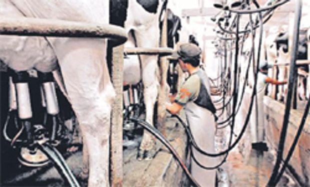 Fondos de la Nación para el sector lácteo
