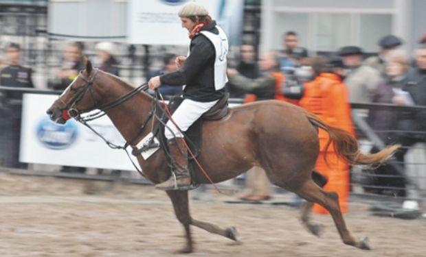 La cría de caballos que no son pura sangre no paga impuestos.