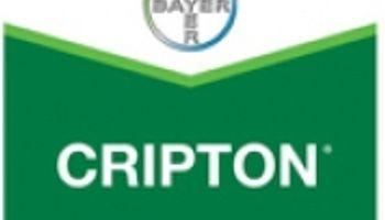 Bayer presenta Cripton: un fungicida para trigo y cebada