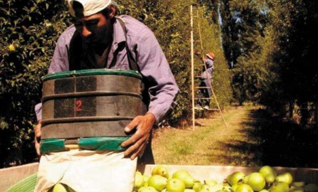 Se calcula que se perdieron 2.200 productores desde 2015.
