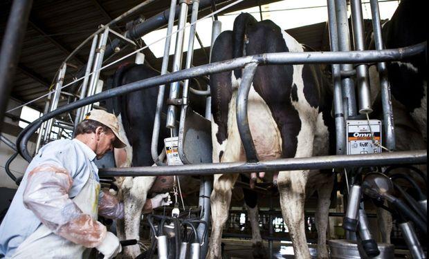 El sector lechero tiene una desventaja a la hora de la negociación.