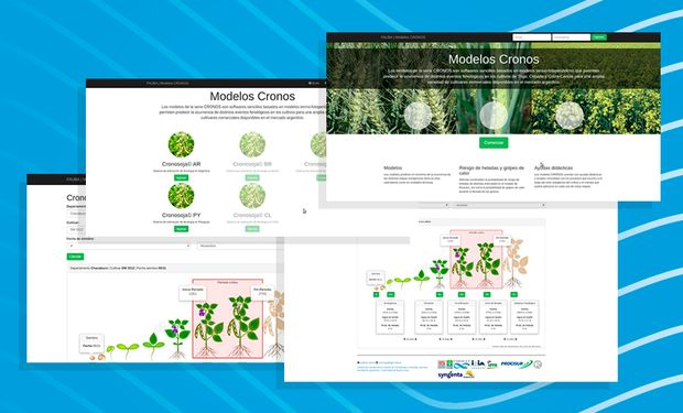 Gratuita y amigable: cómo funciona Cronosoja, la herramienta que ayuda a decidir la fecha de siembra ideal de la soja