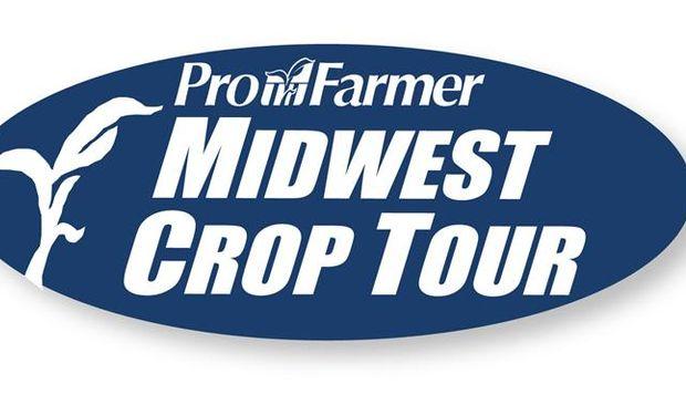 Pro Farmer Crop Tour recortó rindes y producción de soja y maíz