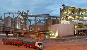 La industria oleaginosa alcanzó un 45% de capacidad ociosa