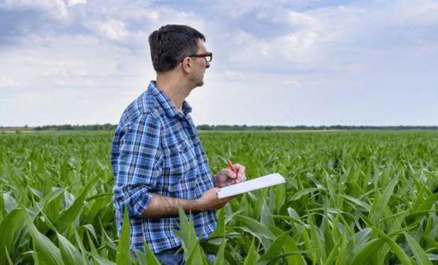 Los impuestos nacionales no coparticipables explican el 55,7% del total de impuestos que afronta una hectárea agrícola en Argentina.