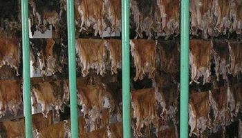En 2 meses, el precio del cuero cayó 10%