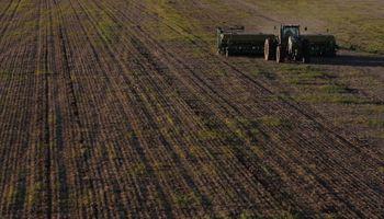 Avanza la creación de un mercado argentino de bonos de carbono