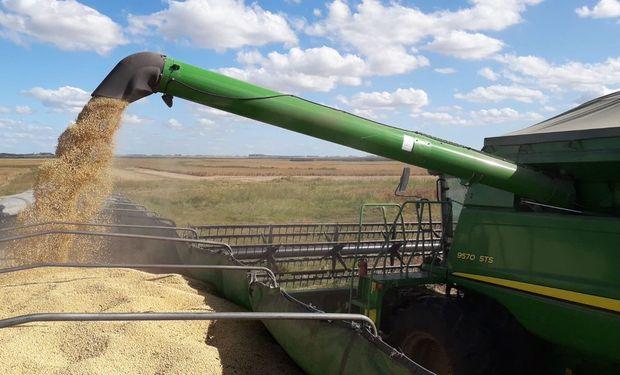 Se acelera la comercialización de soja.