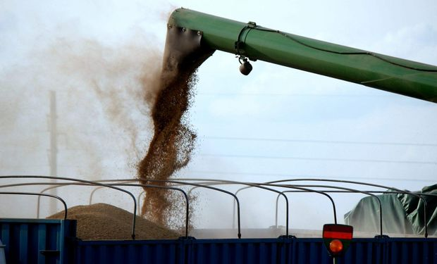 Zona núcleo: solo resta por terminar un 5% de soja de primera, 25% de segunda y 15% de maíz temprano.