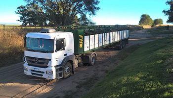 Permiten la desinfección de vehículos para el transporte de animales vivos en lavaderos no habilitados