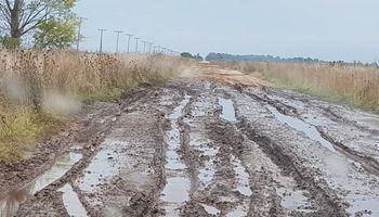 Productores de Azul llevan más de 8 años reclamando el estado de los caminos