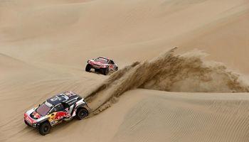 Controles del Senasa en el Rally Dakar 2018