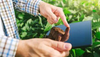 Convertir datos en decisiones: cómo hacer más eficiente tu empresa agroindustrial