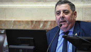 De Angeli se metió en la discusión por los incendios en el Paraná y apuntó contra Cabandié