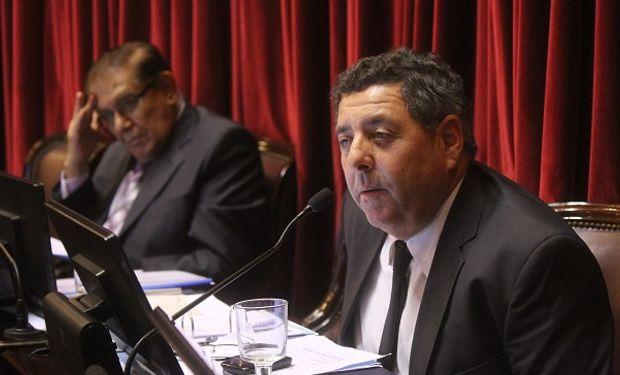 Coronavirus: De Angeli pide implementar testeos rápidos y a gran escala
