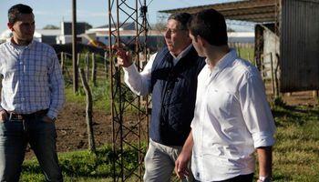 De Angeli presentó su propio proyecto para otorgar tierras fiscales a la producción