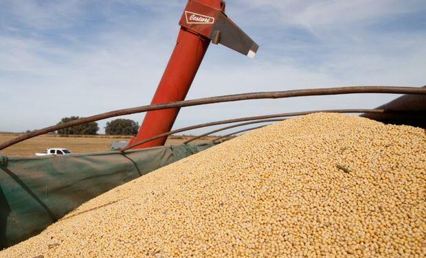 El INASE busca transparentar el mercado de semillas y verificar que el uso propio se encuentre dentro del marco de la Ley de Semillas.