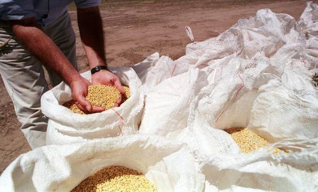 La semilla sembrada deberá ser declarada ante el Inase.