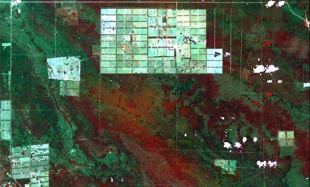 La disminución en las tasas de evapotranspiración incrementó el drenaje profundo de los suelos.