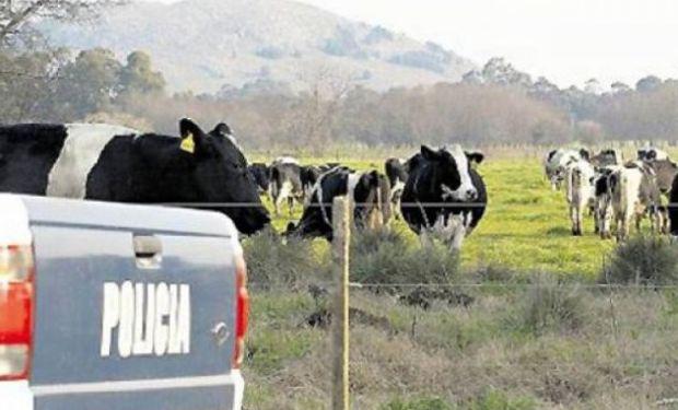 Jornada sobre Delitos Cometidos en Ámbitos Rurales en Tandil.