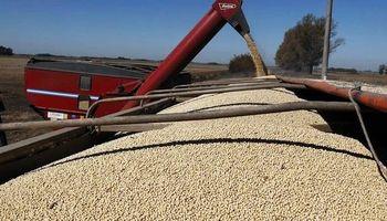 Demanda de soja en China: el potencial de la Argentina está intacto