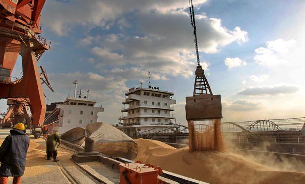 Como consecuencia de una mayor demanda, las existencias finales de soja declinan un 0,5% respecto a noviembre.