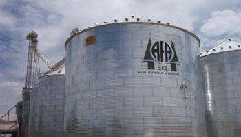 Avanza demanda de Monsanto contra cooperativa de productores