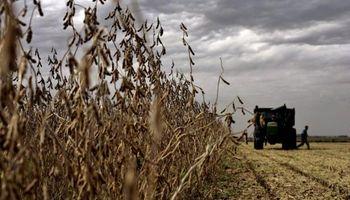 Santa Fe: Preocupa la demora en la cosecha
