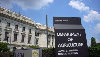 USDA: los datos a seguir del informe que se presenta el martes y que podría impactar en el mercado de granos