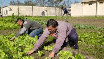 Desarrollan líneas de fortalecimiento, asistencia y protección para las poblaciones rurales más vulnerables