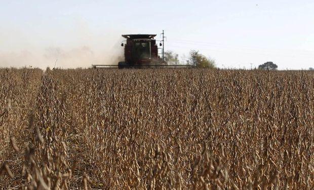 La Bolsa de Cereales de Buenos Aires presentó las estimaciones para la nueva campaña gruesa, que no será récord.