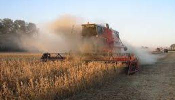Impulso en la cosecha sojera argentina