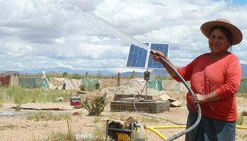 Mayor competitividad para explotaciones ganaderas salteñas con un sistema de bombeo solar