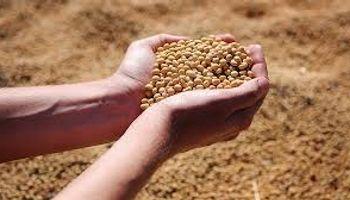 Ley de Semillas y Biotecnología agrícola: adelanto del Congreso Argentino de Semillas