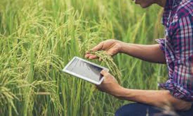 """Presentaron el """"Ecosistema Agtech Nacional"""", una herramienta para asociar tecnologías y trabajar en periurbanos"""