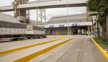 La entrega del trigo en los puertos muestra un atraso contra la última campaña