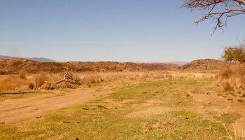 San Luis: multa millonaria por desmonte ilegal