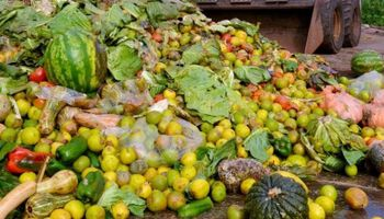 Un tercio de los alimentos van a parar a la basura