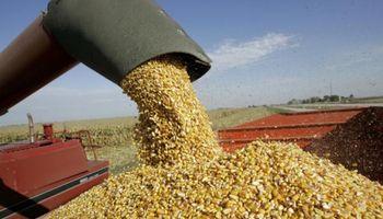 Fondo del Gobierno no mejorará situación de productores