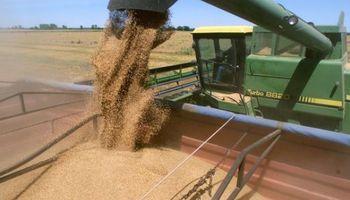 Devolverán retenciones a pequeños productores