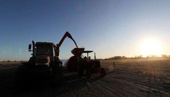 Día de la Agricultura en Argentina: por qué se celebra el 2 de julio