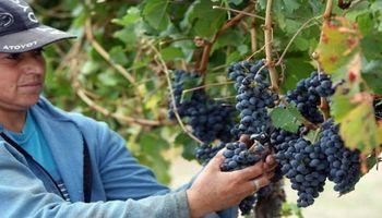 Aguinaldo de trabajadores rurales: pautas para la segunda cuota del año